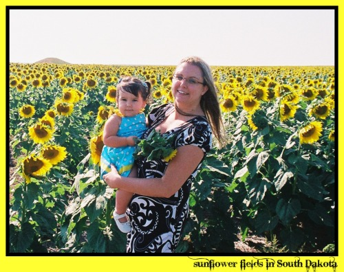 sunflowers mommy and me picnik