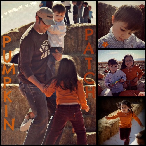 PUMPKINPATCHcollage