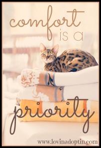 comfort priority