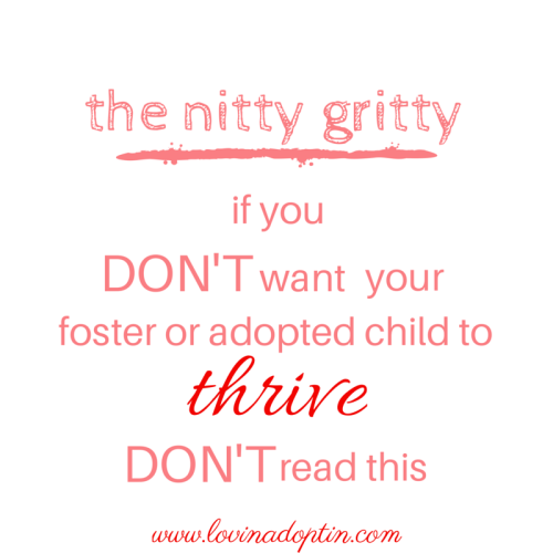 the nitty gritty- if you DON'T want your foster or adopted child to thrive DON'T read this