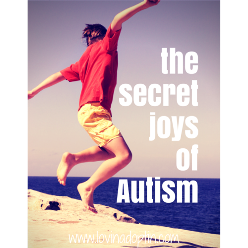 the secret joys of Autism